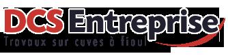 DCS Entreprise Logo